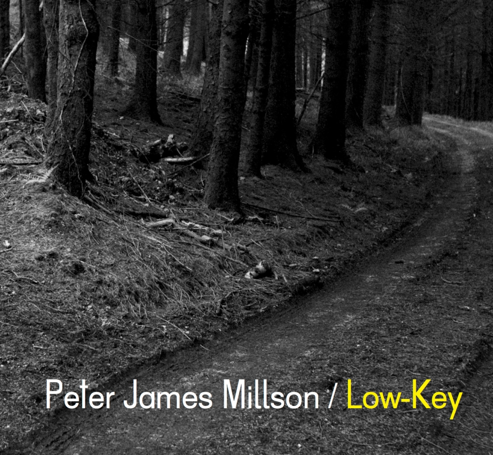 peter james millson - low-key - covera